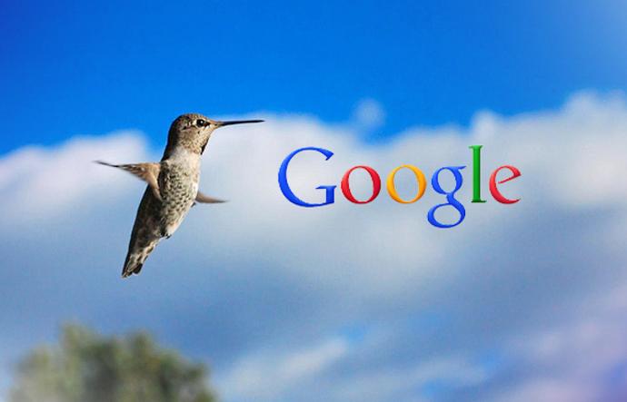 hummingbird safe seo company