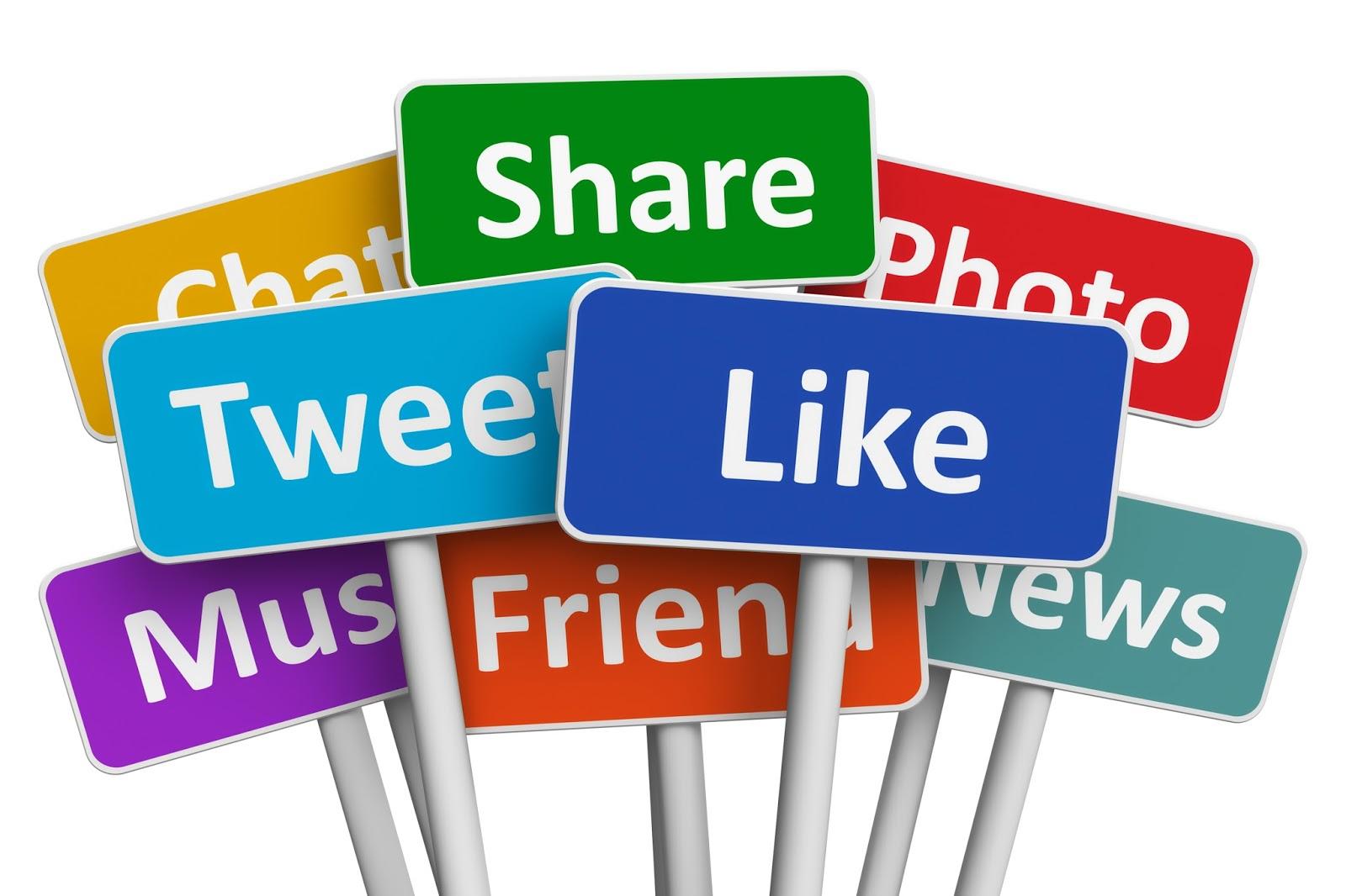 Social Media SEO Portfolio